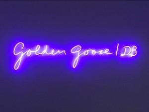 foto-showroom-golden-goose1-bassa