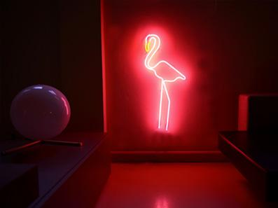 scritta-al-neon-disegno-flamingo